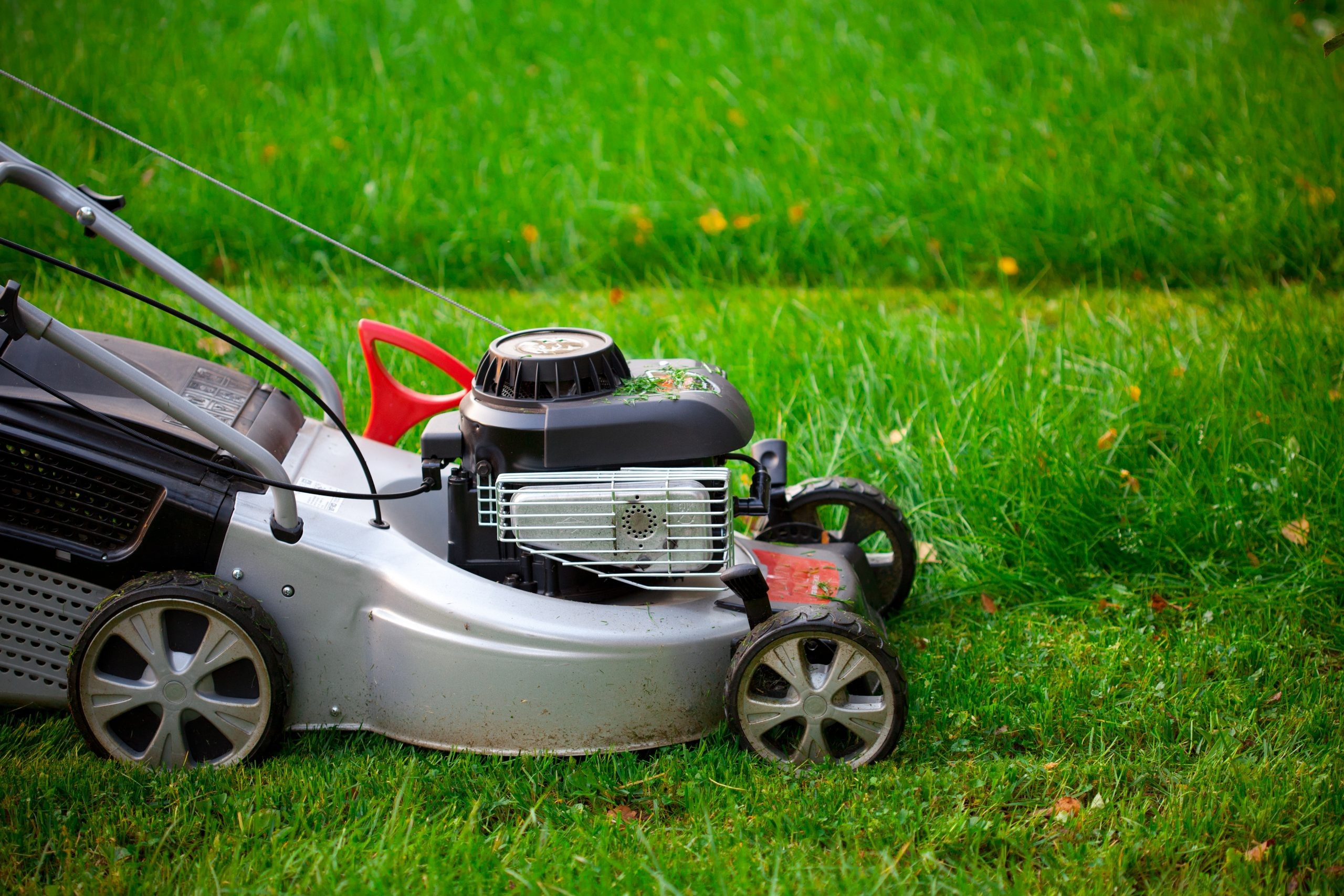 Getting your lawn mowed